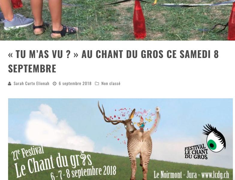 """Article Daily Rock """"Tu m'as vu ?"""" au Mini du Gros, festival des enfants, interne au Chant du Gros"""