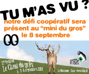 Tu m'as vu? au festival du Chant du Gros 2018