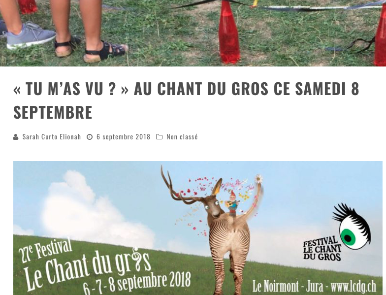 "Article Daily Rock ""Tu m'as vu ?"" au Mini du Gros, festival des enfants, interne au Chant du Gros"